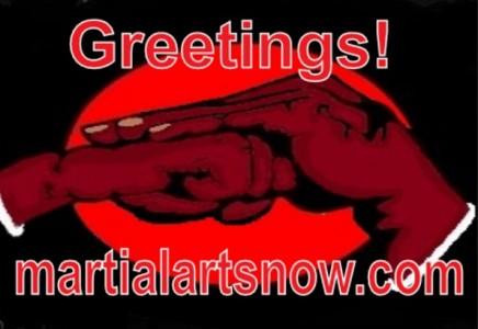 Fist-Law-Martial-Arts-Now-e1438387790296